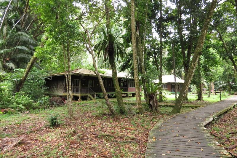 Forest lodges inside Bako national park