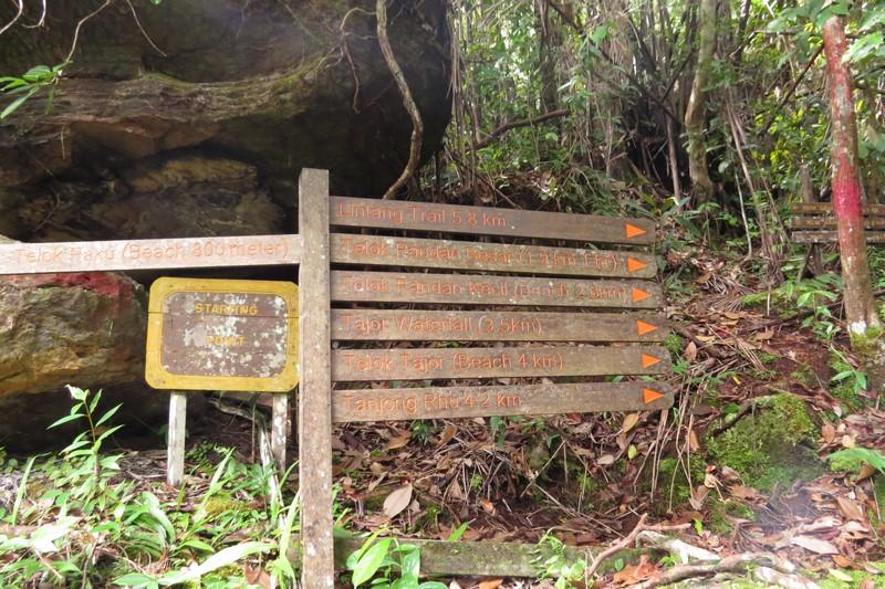 Clearly marked trails inside the jungle