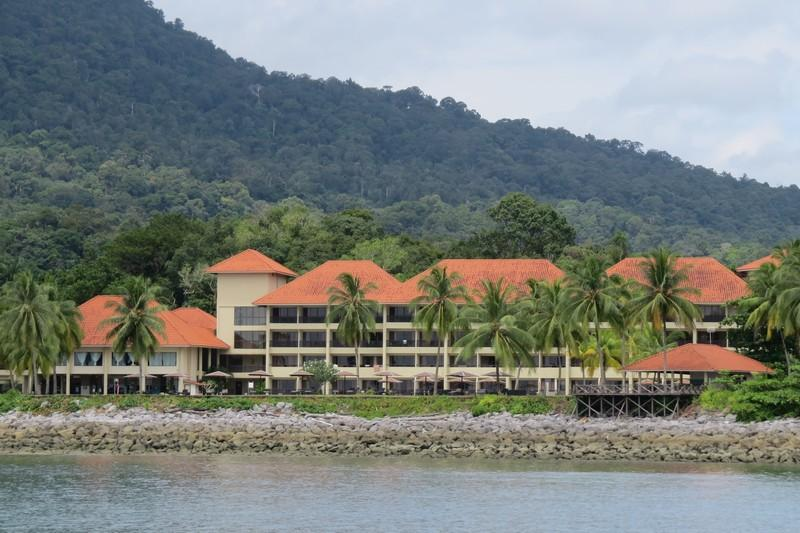 damai mangrove tour