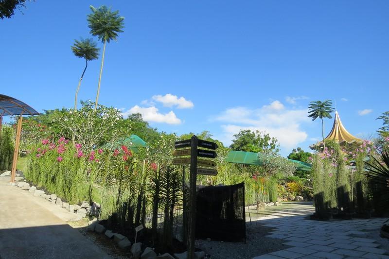 Orchid garden in Kuching