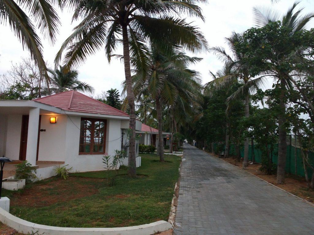 low light cottages