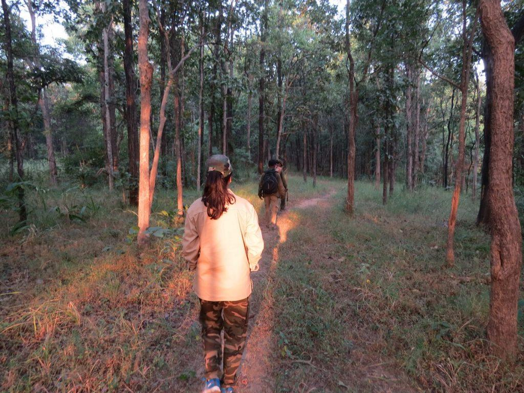 Walking safari in Satpura national park