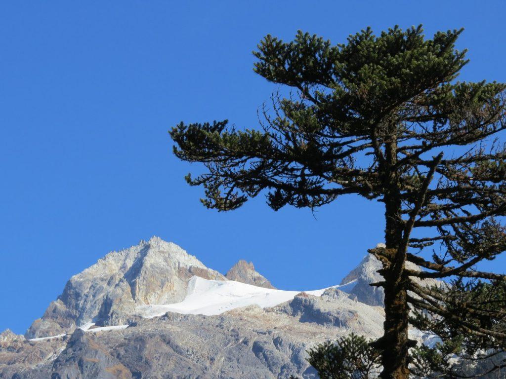 snowcapped peaks sikkim