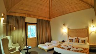 rooms at tarangi