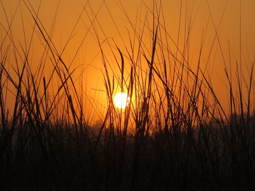 Sunsets in Corbett